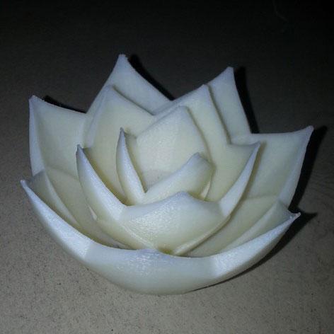 莲花3D打印模型,莲花3D模型下载,3D打印莲花模型下载,莲花3D模型,莲花STL格式文件,莲花3D打印模型免费下载,3D打印模型库
