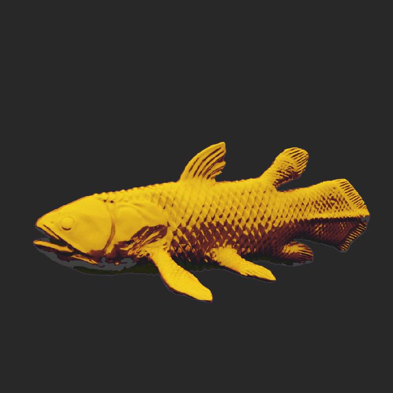 腔棘鱼3D打印模型,腔棘鱼3D模型下载,3D打印腔棘鱼模型下载,腔棘鱼3D模型,腔棘鱼STL格式文件,腔棘鱼3D打印模型免费下载,3D打印模型库