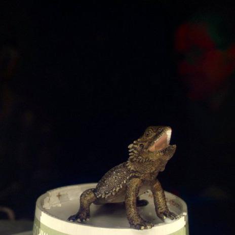 蜥蜴3D打印模型,蜥蜴3D模型下载,3D打印蜥蜴模型下载,蜥蜴3D模型,蜥蜴STL格式文件,蜥蜴3D打印模型免费下载,3D打印模型库