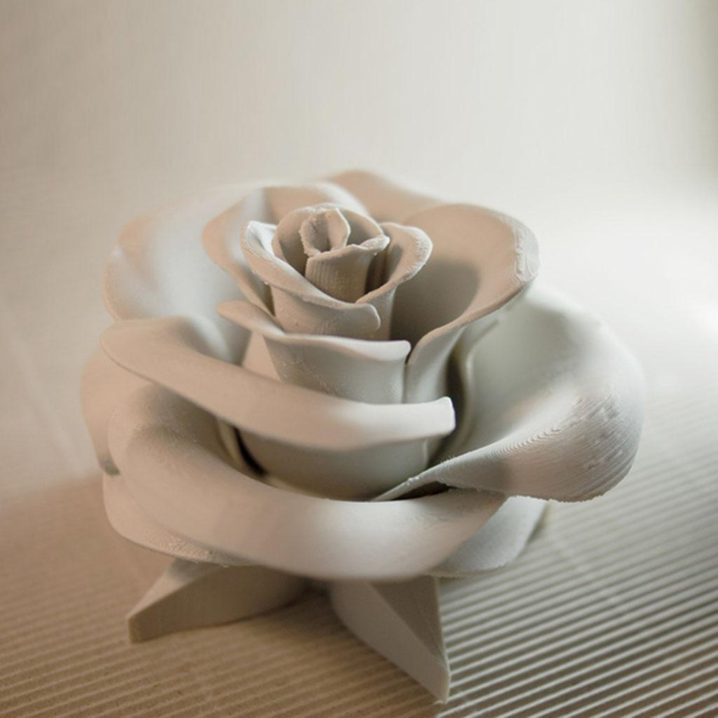 真正的玫瑰3D打印模型,真正的玫瑰3D模型下载,3D打印真正的玫瑰模型下载,真正的玫瑰3D模型,真正的玫瑰STL格式文件,真正的玫瑰3D打印模型免费下载,3D打印模型库