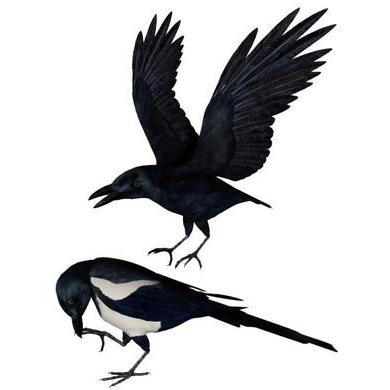 乌鸦3D打印模型,乌鸦3D模型下载,3D打印乌鸦模型下载,乌鸦3D模型,乌鸦STL格式文件,乌鸦3D打印模型免费下载,3D打印模型库