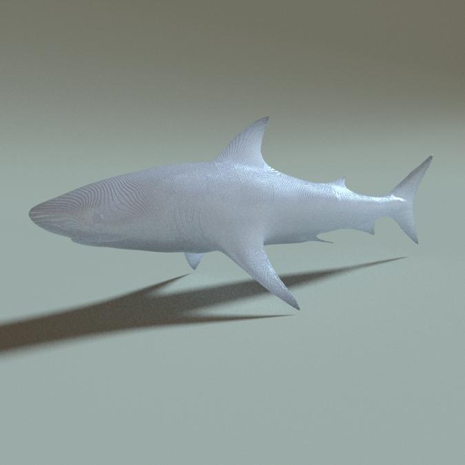 大白鲨3D打印模型,大白鲨3D模型下载,3D打印大白鲨模型下载,大白鲨3D模型,大白鲨STL格式文件,大白鲨3D打印模型免费下载,3D打印模型库
