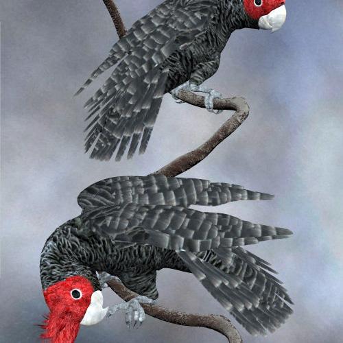 鸟3D打印模型,鸟3D模型下载,3D打印鸟模型下载,鸟3D模型,鸟STL格式文件,鸟3D打印模型免费下载,3D打印模型库