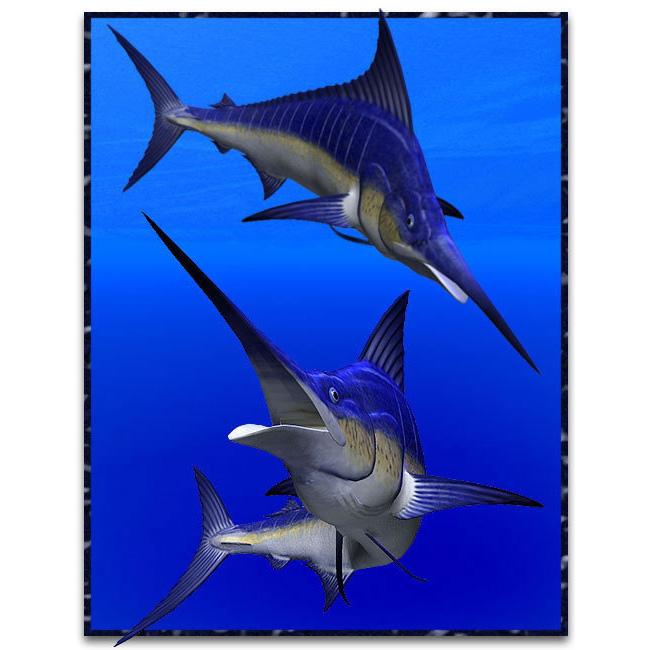 马林鱼3D打印模型,马林鱼3D模型下载,3D打印马林鱼模型下载,马林鱼3D模型,马林鱼STL格式文件,马林鱼3D打印模型免费下载,3D打印模型库