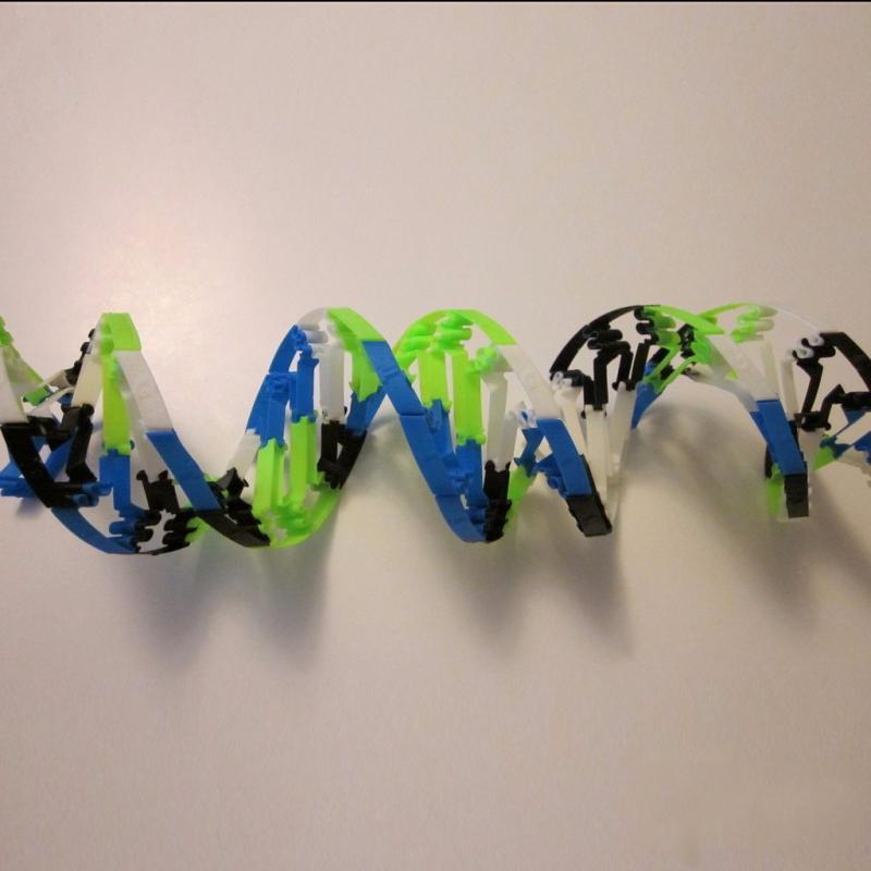 DNA模型3D打印模型,DNA模型3D模型下载,3D打印DNA模型模型下载,DNA模型3D模型,DNA模型STL格式文件,DNA模型3D打印模型免费下载,3D打印模型库