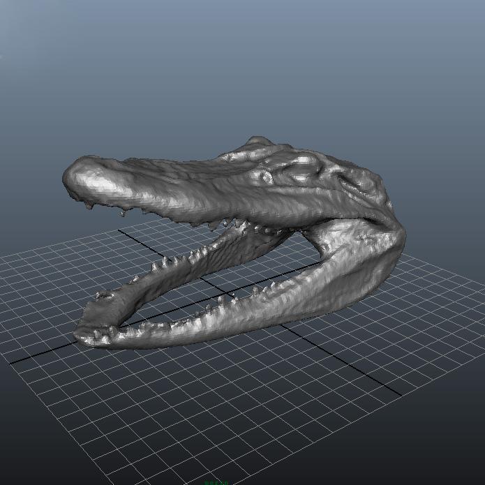 鳄鱼头部3D打印模型,鳄鱼头部3D模型下载,3D打印鳄鱼头部模型下载,鳄鱼头部3D模型,鳄鱼头部STL格式文件,鳄鱼头部3D打印模型免费下载,3D打印模型库