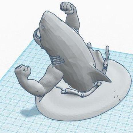 结实的鲨鱼3D打印模型,结实的鲨鱼3D模型下载,3D打印结实的鲨鱼模型下载,结实的鲨鱼3D模型,结实的鲨鱼STL格式文件,结实的鲨鱼3D打印模型免费下载,3D打印模型库