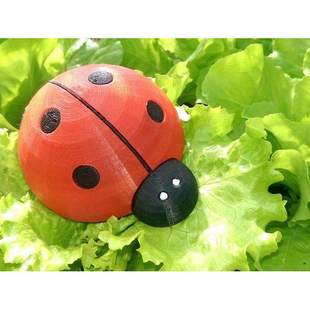 瓢虫3D打印模型,瓢虫3D模型下载,3D打印瓢虫模型下载,瓢虫3D模型,瓢虫STL格式文件,瓢虫3D打印模型免费下载,3D打印模型库