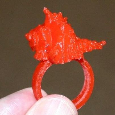 贝壳指环3D打印模型,贝壳指环3D模型下载,3D打印贝壳指环模型下载,贝壳指环3D模型,贝壳指环STL格式文件,贝壳指环3D打印模型免费下载,3D打印模型库