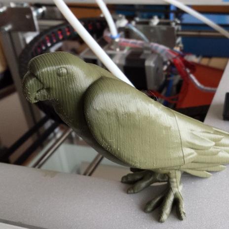 鹦鹉3D打印模型,鹦鹉3D模型下载,3D打印鹦鹉模型下载,鹦鹉3D模型,鹦鹉STL格式文件,鹦鹉3D打印模型免费下载,3D打印模型库