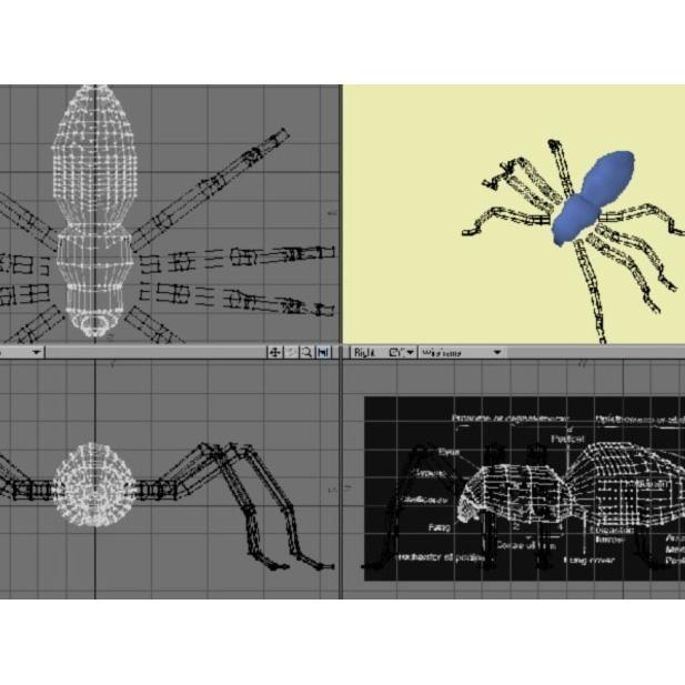 蜘蛛3D打印模型,蜘蛛3D模型下载,3D打印蜘蛛模型下载,蜘蛛3D模型,蜘蛛STL格式文件,蜘蛛3D打印模型免费下载,3D打印模型库